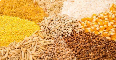 Atraso na safrinha impacta safra de grãos