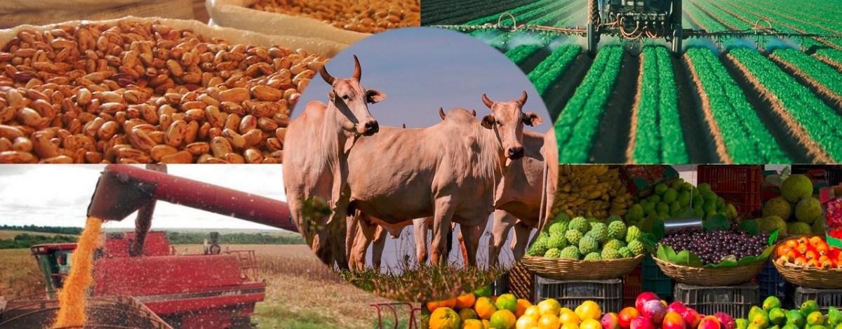 José Roberto Mendonça de Barros comenta as interferências da economia mundial no agronegócio Brasil